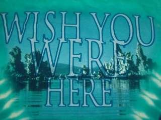 PINK FLOYD WISH YOU WERE HERE t shirt BLUE TIE DYE M
