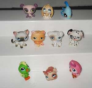 NICE LOT 10 EA Littlest Pet Shop PETS Some RARE Cats,Dogs,Bunny,Panda