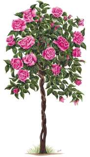 Tatouage Pink Rose Tree Dry Rub Transfer Mural