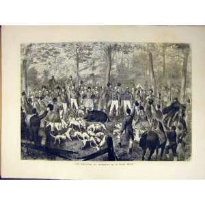 German Emperor Boar Hunt Dog Hound Pig Old Print 1871: Home & Kitchen