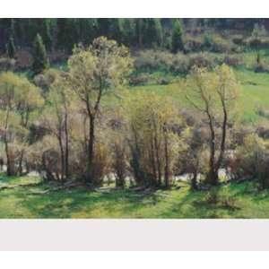 Of Spring   Poster by Clyde Aspevig (31x27): Patio, Lawn & Garden