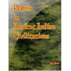 in Ancient Indian Civilization (9788173200731): Ajay Singh: Books