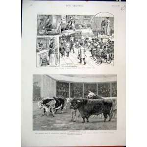 1892 Coal Crisis Queen Sale Cattle Prince Consort Farm