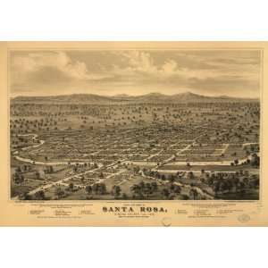 Panoramic Map Birds eye view of Santa Rosa, Sonoma County, Cal