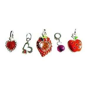 Hidden Gems Silver Plated (M520) Dangle Charm Beads Set of 5, will fit