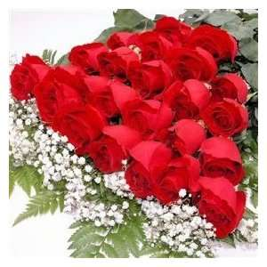 Two Dozen Premium Red Roses Bouquet:  Kitchen & Dining