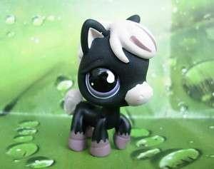 LITTLEST PET SHOP Pony Horse Black #523