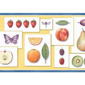 Blue Yellow and White Fruit Apple Wallpaper Border: Kitchen & Dining