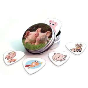 Pigs Premium Guitar Picks x 5 With Tin Musical Instruments