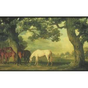 Horses Wallpaper Border in York Border Gallery