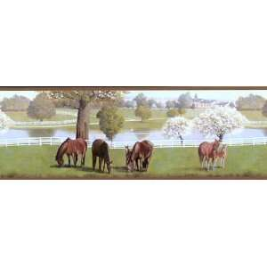 Childrens Horse Wallpaper Border Home Improvement